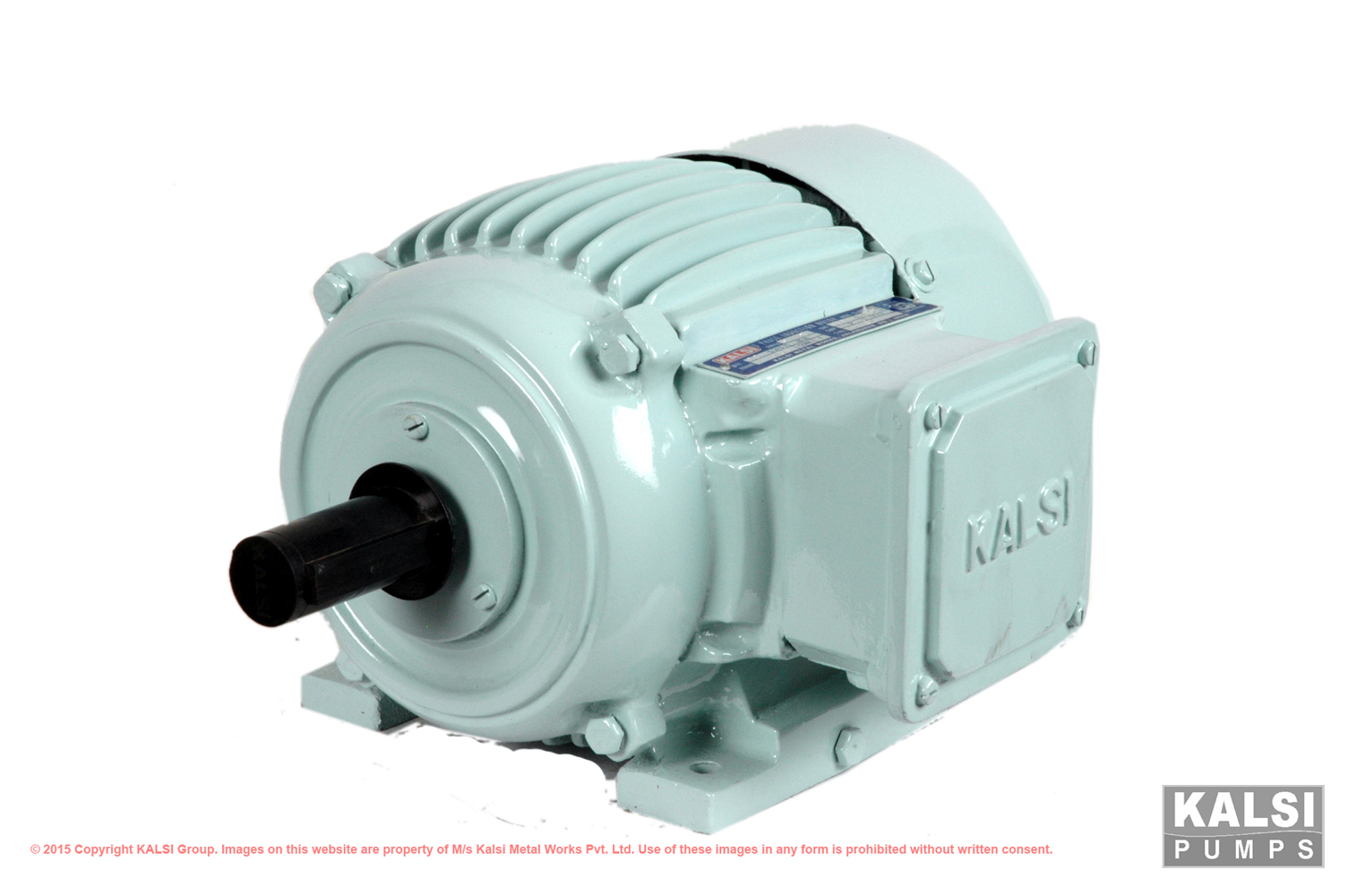 Kalsi Group » Product Categories » Squirrel Cage Induction Motors